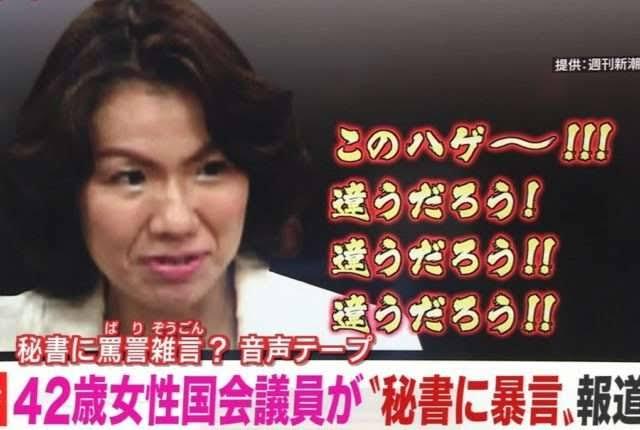 豊田真由子元衆院議員